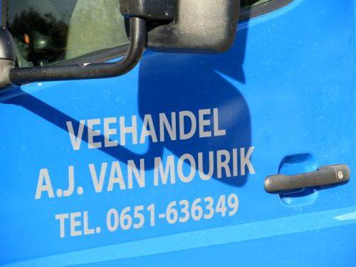 Veehandel A.J. van Mourik uit Nieuwland